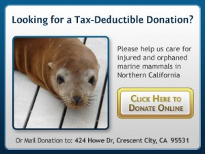 Looking for a Tax-Deductible Donation?