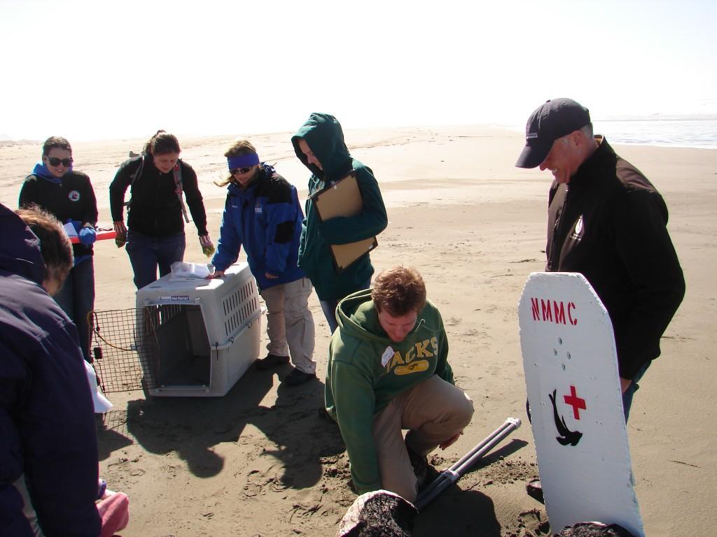 Team prepares for rescue